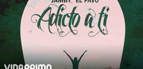 Adicto a Ti [Lyric Video] - Jamby