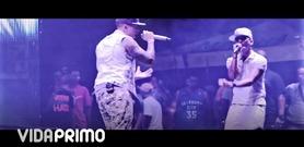 """Galante """"El Emperador"""" en VidaPrimo.com"""