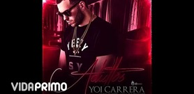 Yoi Carrera on VidaPrimo.com