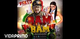Pinto on VidaPrimo.com