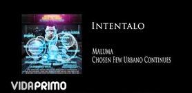 Maluma en VidaPrimo.com