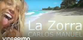 La Zorra [Lyric Video] - Carlos Manuel